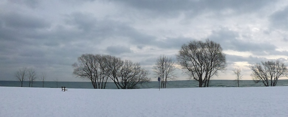 This is the view at the bottom of my street, looking south towards Lake Ontario.