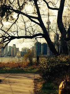 View of the city from Centre Island.